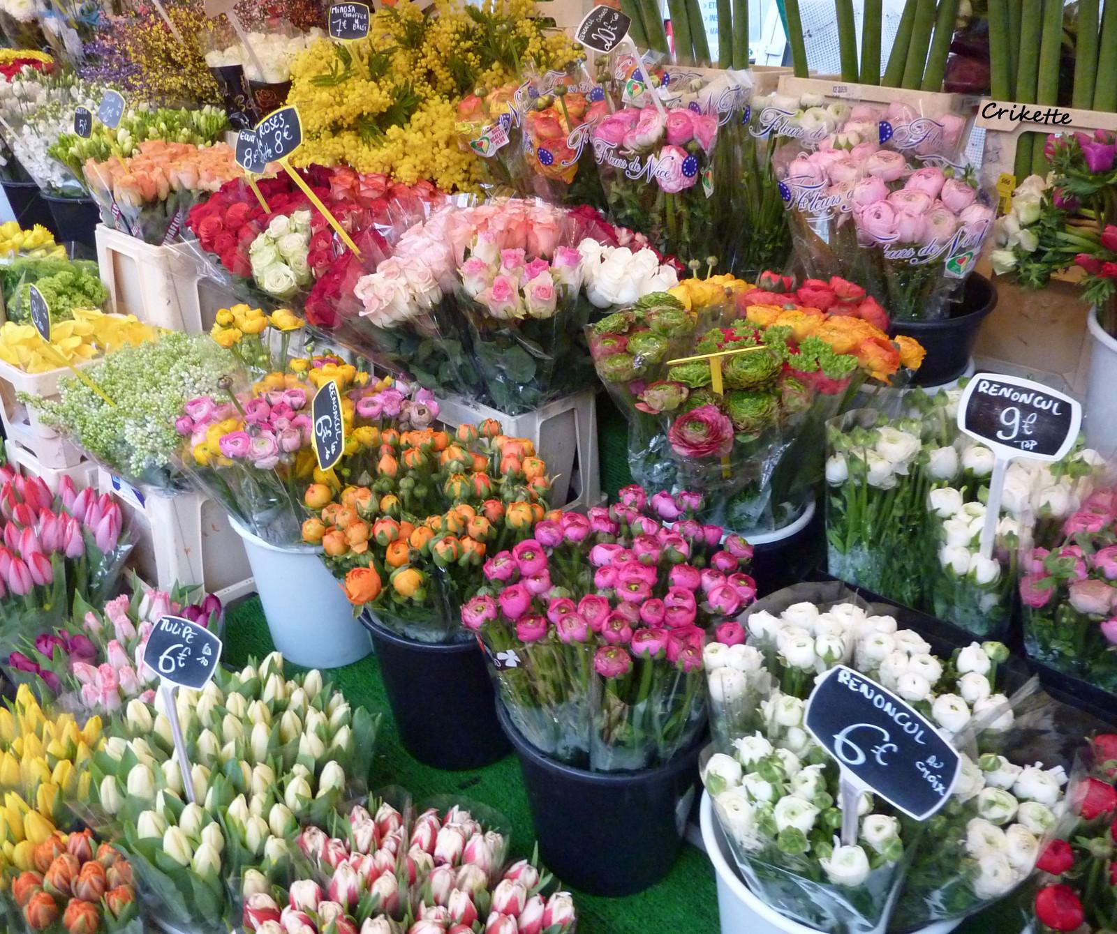 Где дешевле купить цветы в краснодаре