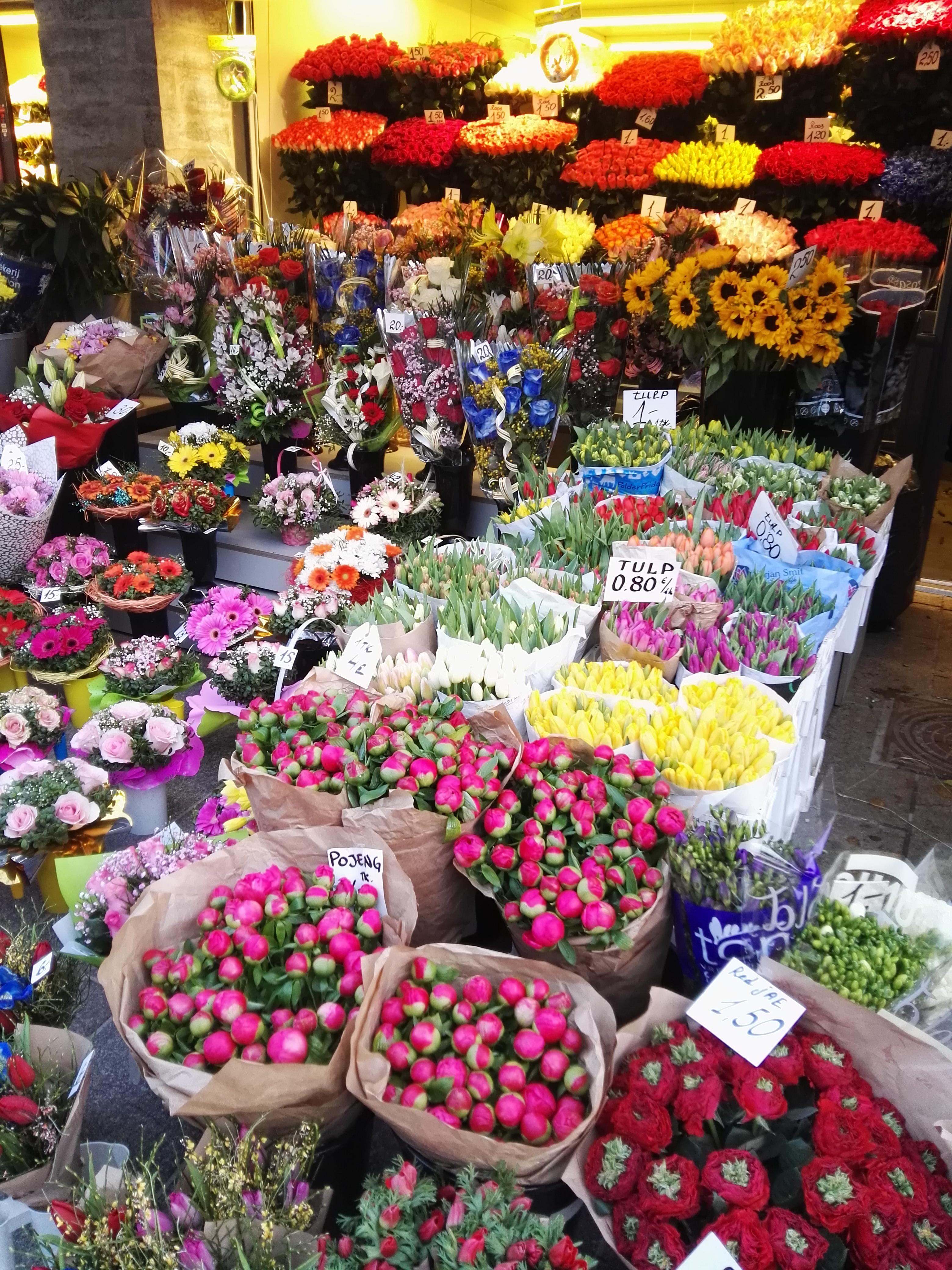 Цветоводства субтропических, уфа оптовые поставки цветов